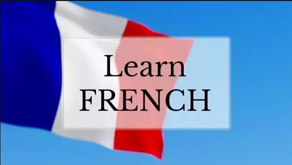 French institutes in Ambala
